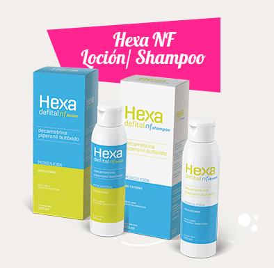 Hexa NF